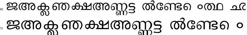 DVMalayalam Malayalam Font