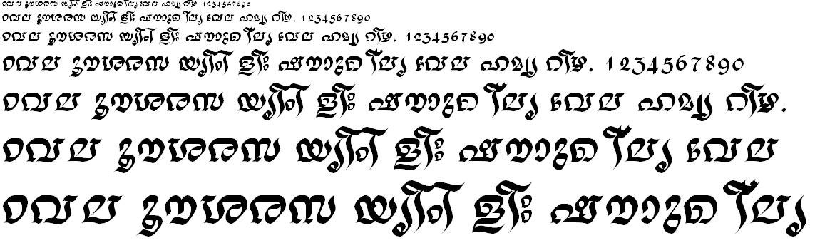ML_TT_Nalini Bold Malayalam Font