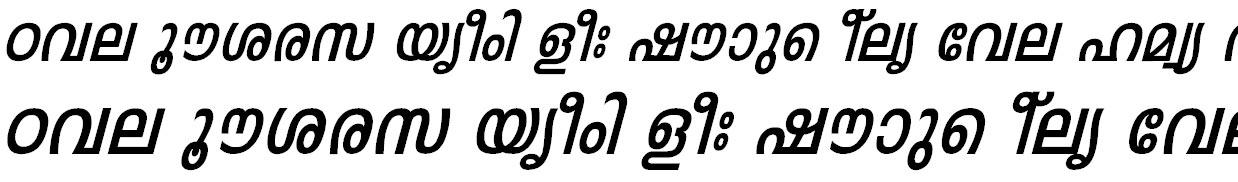 FML-Leela Bold Italic Bangla Font