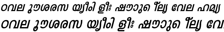 FML-TT-Leela Bold Italic Bangla Font