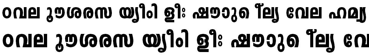 FML-TT-Leela Heavy Bangla Font