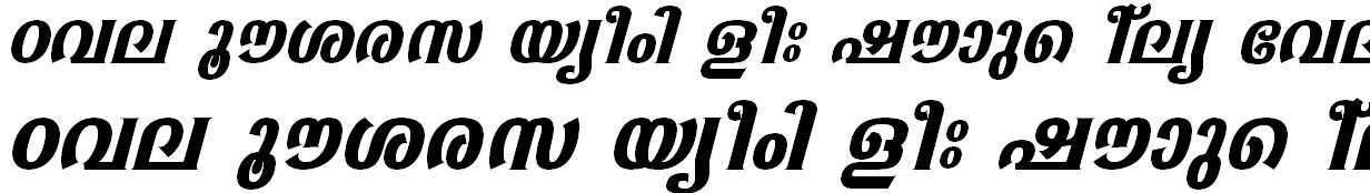 FML-TT-Sabari Bold Italic Bangla Font