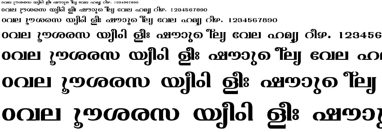 FML-TT-Varsha Bold Malayalam Font