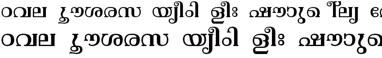 FML-TT-Vishu Bangla Font